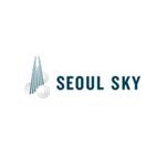 서울 스카이 로고