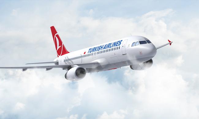 터키항공 사진